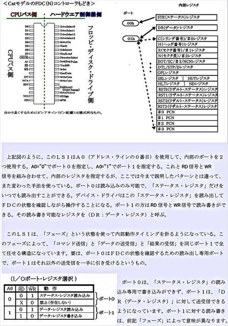 C02_R.JPG