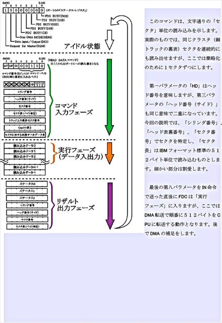 C21_R.JPG