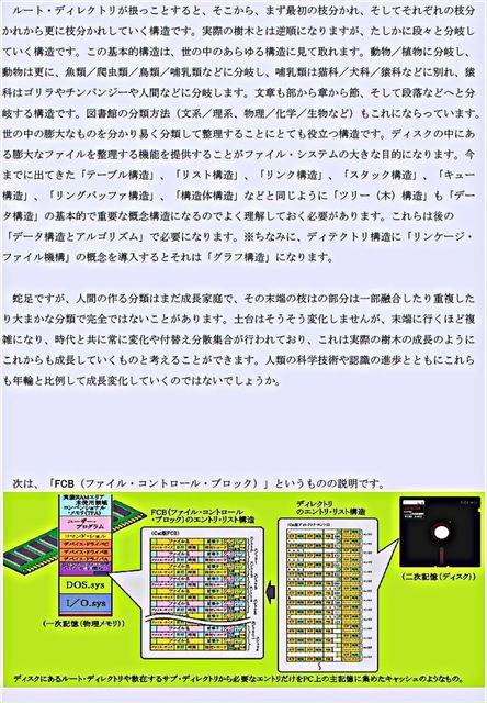 g010_R.JPG